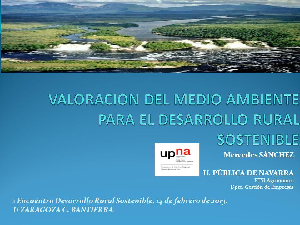 Mercedes SÁNCHEZ U. PÚBLICA DE NAVARRA ETSI Agrónomos Dpto. Gestión de Empresas I Encuentro Desarrollo Rural Sostenible, 14 de febrero de 2013. U ZARA