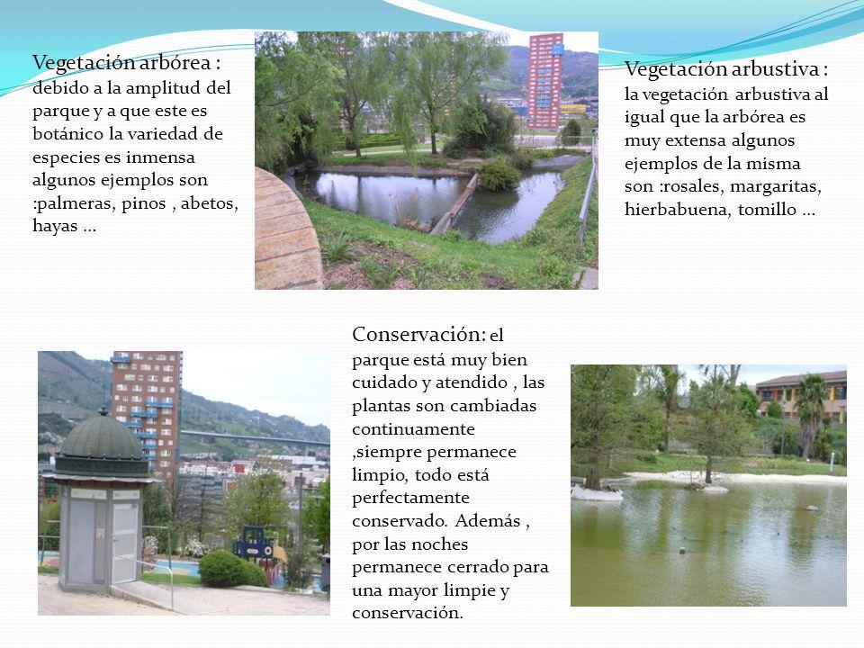Vegetación arbórea : debido a la amplitud del parque y a que este es botánico la variedad de especies es inmensa algunos ejemplos son :palmeras, pinos