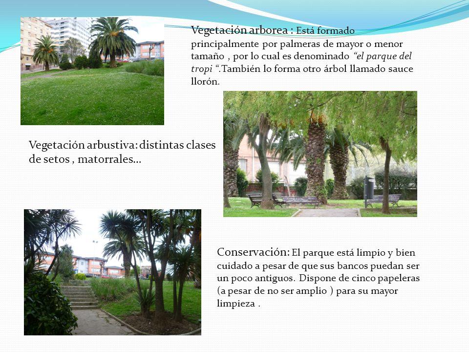 Vegetación arborea : Está formado principalmente por palmeras de mayor o menor tamaño, por lo cual es denominado el parque del tropi.También lo forma