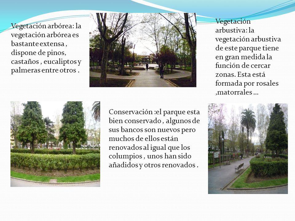 Vegetación arbórea: la vegetación arbórea es bastante extensa, dispone de pinos, castaños, eucaliptos y palmeras entre otros. Vegetación arbustiva: la