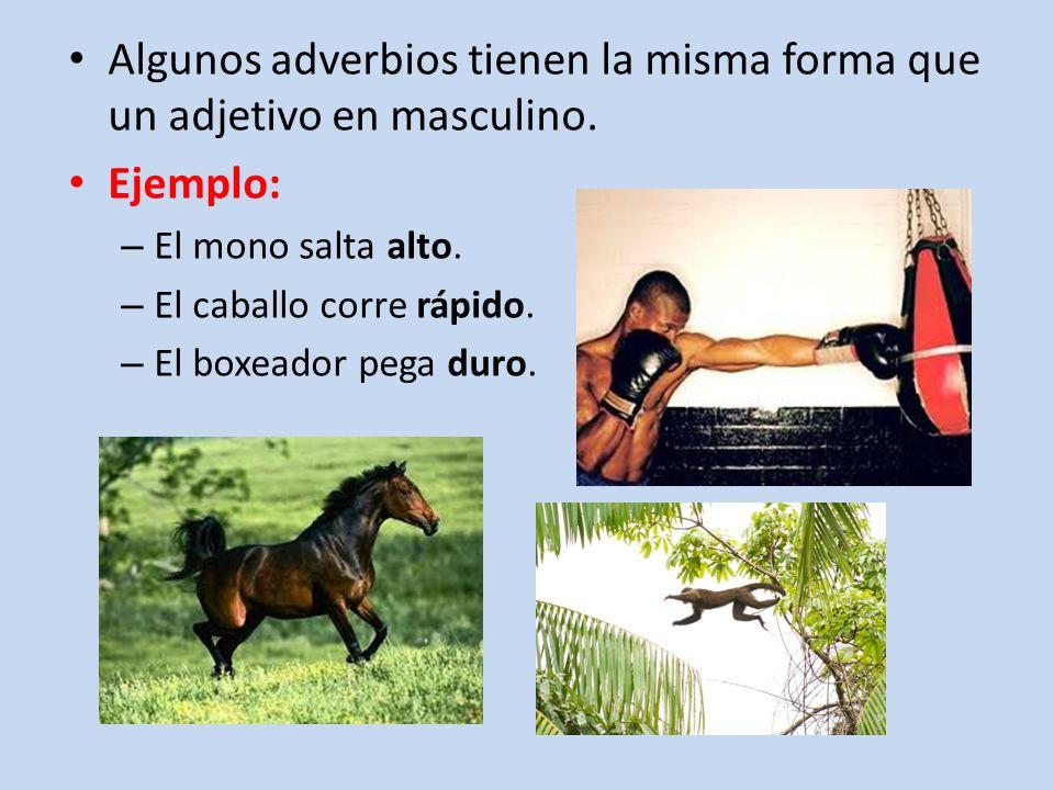 Algunos adverbios tienen la misma forma que un adjetivo en masculino. Ejemplo: – El mono salta alto. – El caballo corre rápido. – El boxeador pega dur