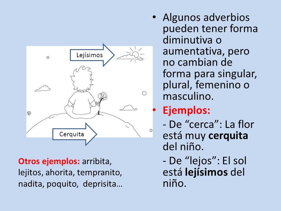 Normalmente los adverbios son complementos circunstanciales del verbo, o sea los adverbios dan información sobre la acción del verbo.
