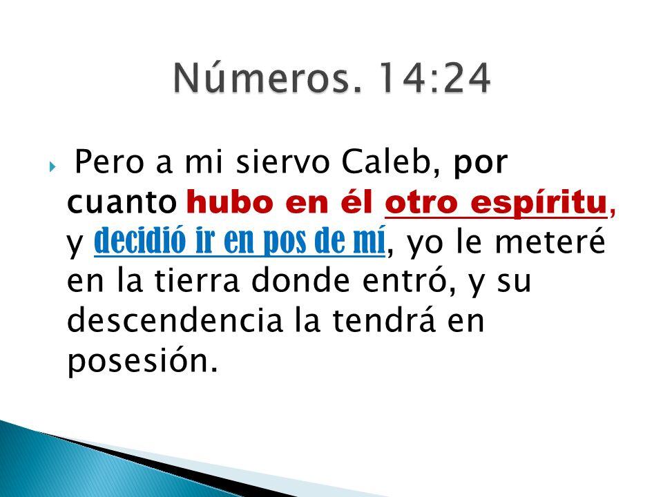 Pero a mi siervo Caleb, por cuanto hubo en él otro espíritu, y decidió ir en pos de mí, yo le meteré en la tierra donde entró, y su descendencia la te