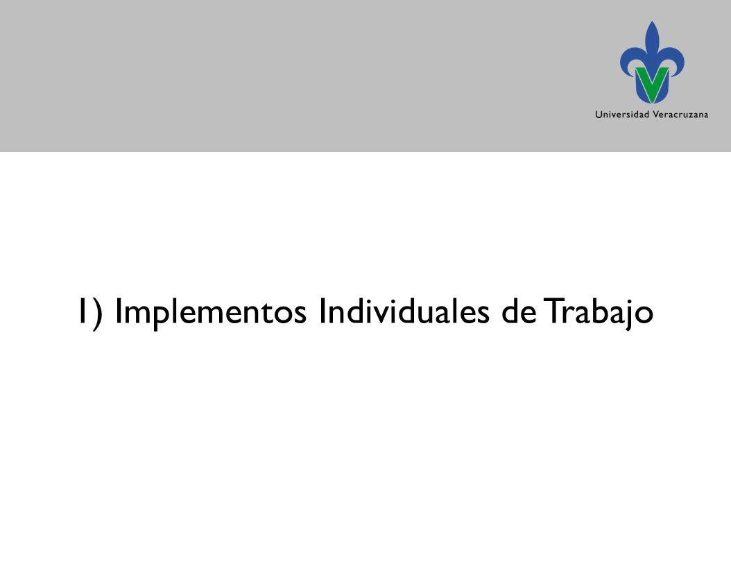 1) Implementos Individuales de Trabajo