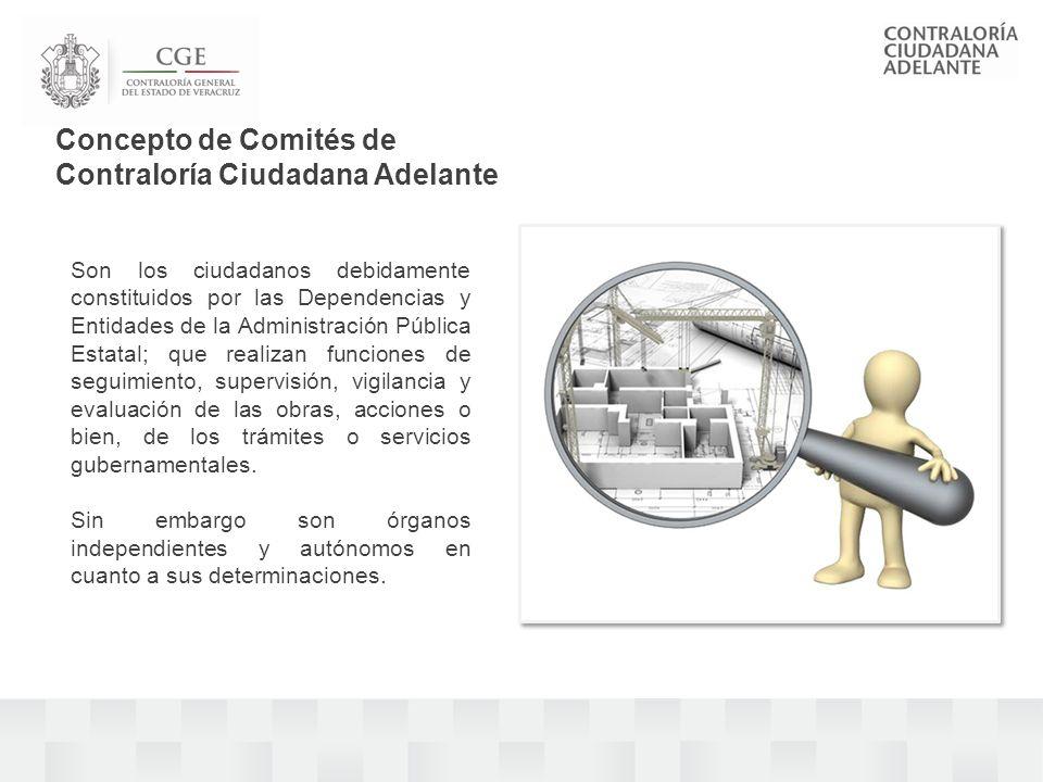 Los Comités Adelante juegan un papel preponderante en el ejercicio de Gobierno y estos constituyen el reconocimiento del derecho que tienen los ciudadanos de participar en el quehacer gubernamental.