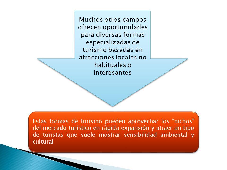 Muchos otros campos ofrecen oportunidades para diversas formas especializadas de turismo basadas en atracciones locales no habituales o interesantes E