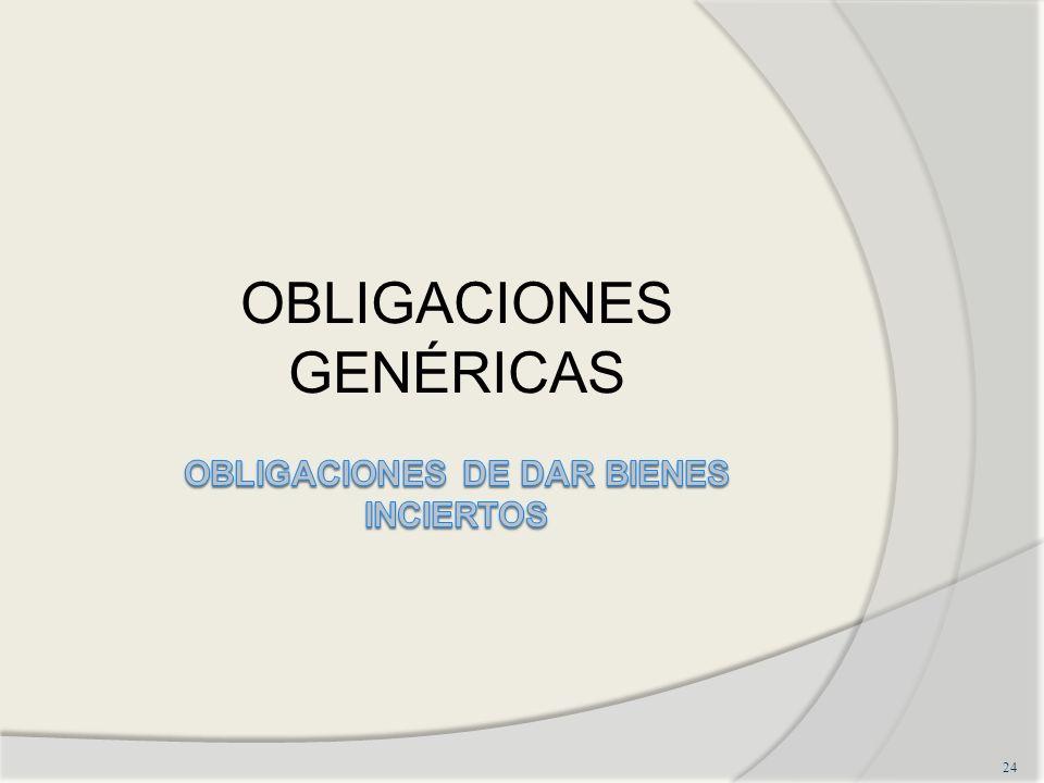 OBLIGACIONES GENÉRICAS 24