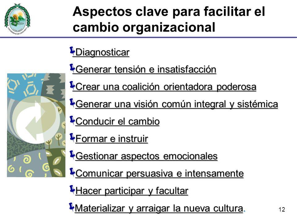 Aspectos clave para facilitar el cambio organizacional 12 Diagnosticar Diagnosticar Diagnosticar Diagnosticar Crear una coalición orientadora poderosa