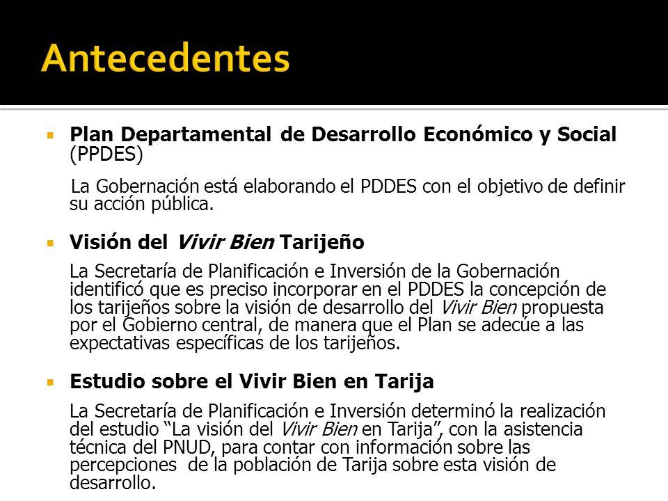 Plan Departamental de Desarrollo Económico y Social (PPDES) La Gobernación está elaborando el PDDES con el objetivo de definir su acción pública.