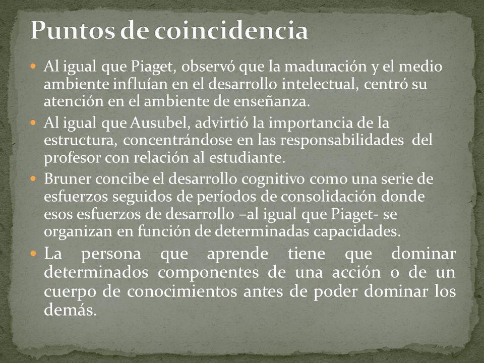 Al igual que Piaget, observó que la maduración y el medio ambiente influían en el desarrollo intelectual, centró su atención en el ambiente de enseñanza.