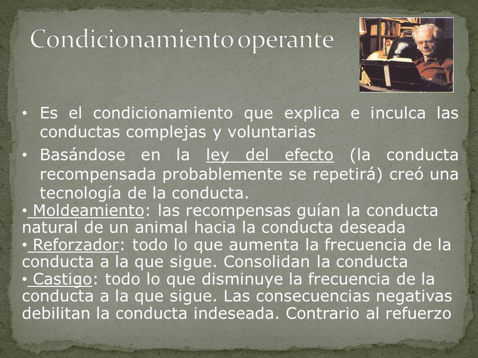 Es el condicionamiento que explica e inculca las conductas complejas y voluntarias Basándose en la ley del efecto (la conducta recompensada probablemente se repetirá) creó una tecnología de la conducta.