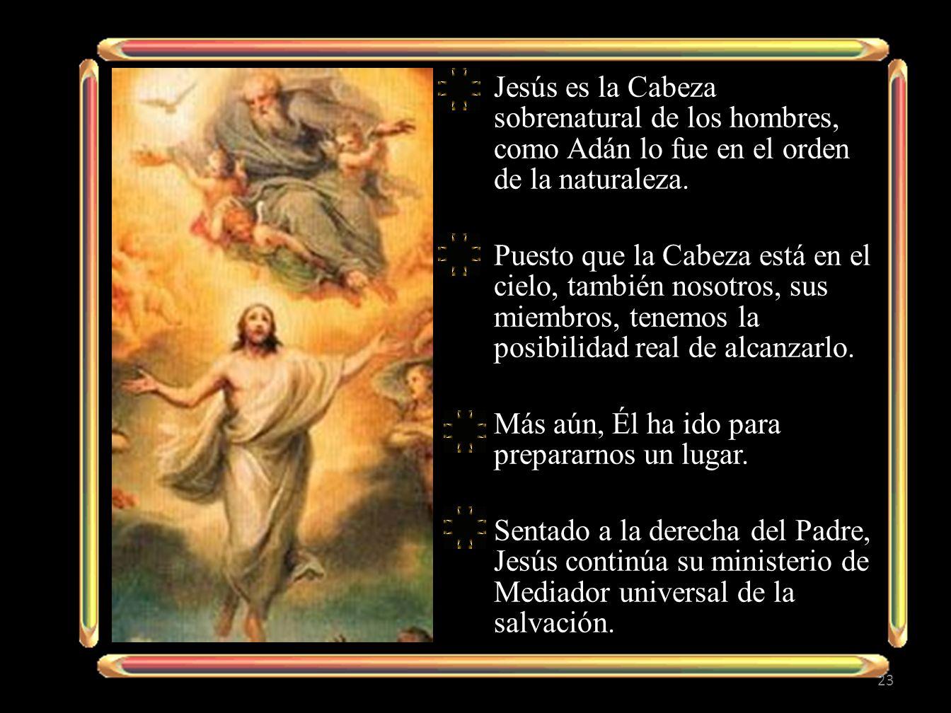 Jesús es la Cabeza sobrenatural de los hombres, como Adán lo fue en el orden de la naturaleza. Puesto que la Cabeza está en el cielo, también nosotros