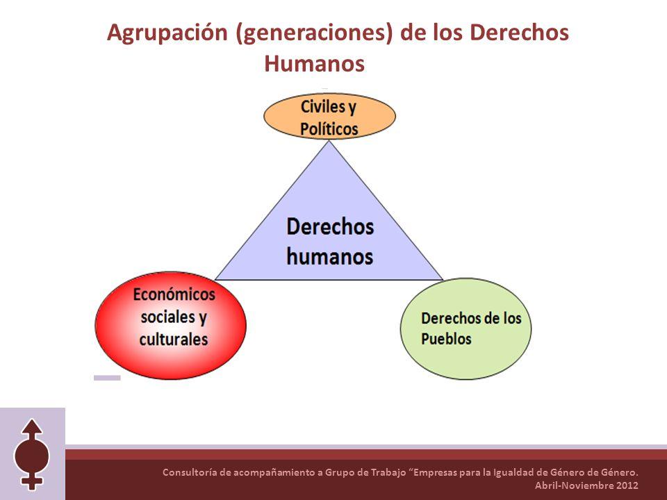 Consultoría de acompañamiento a Grupo de Trabajo Empresas para la Igualdad de Género de Género. Abril-Noviembre 2012 Agrupación (generaciones) de los
