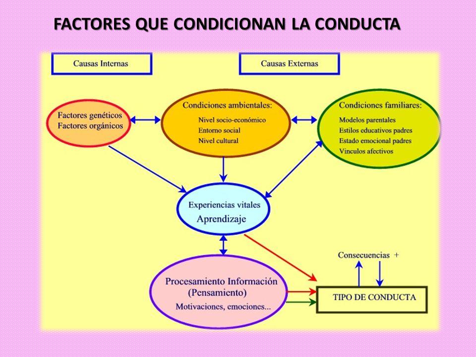 ESTABLECIMIENTO DE NORMAS DE CONDUCTA EN CLASE A) INSTRUCCIONES B) MOMENTOS ÓPTIMOS DE REPASO C) TÉCNICAS: IGNORAR Y ALABAR.