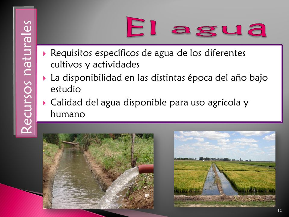 12 Requisitos específicos de agua de los diferentes cultivos y actividades La disponibilidad en las distintas época del año bajo estudio Calidad del agua disponible para uso agrícola y humano Recursos naturales