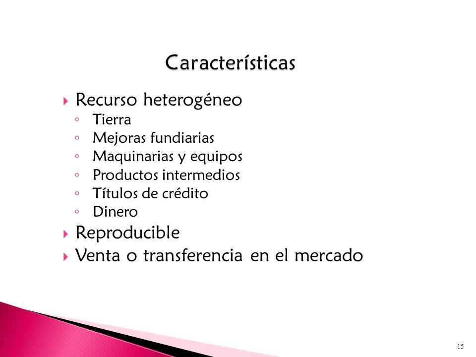Recurso heterogéneo Tierra Mejoras fundiarias Maquinarias y equipos Productos intermedios Títulos de crédito Dinero Reproducible Venta o transferencia en el mercado 15