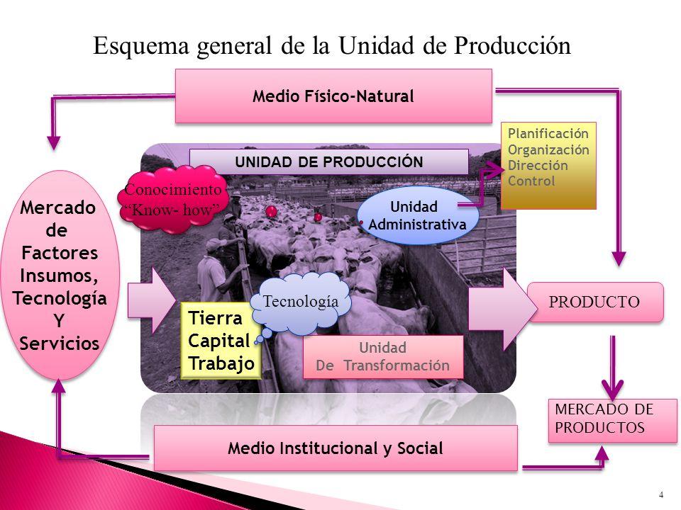 UNIDAD DE PRODUCCIÓN Esquema general de la Unidad de Producción Unidad Administrativa Unidad Administrativa Planificación Organización Dirección Contr
