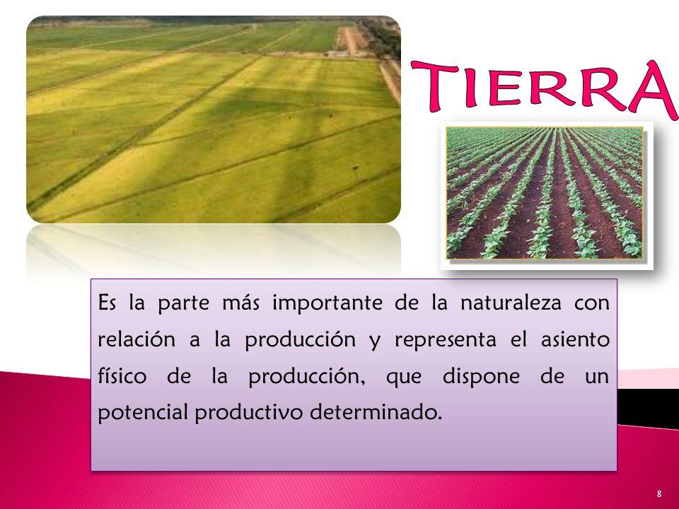 Es la parte más importante de la naturaleza con relación a la producción y representa el asiento físico de la producción, que dispone de un potencial productivo determinado.