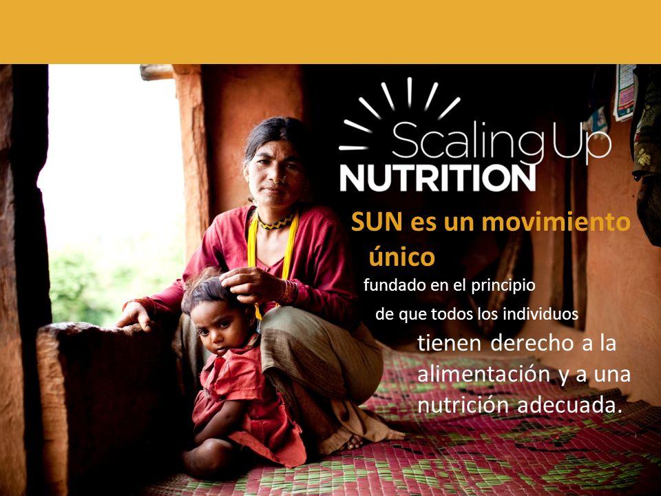 Reúne a personas de gobiernos, la sociedad civil, las Naciones Unidas, los donantes, las empresas y los investigadores bajo el esfuerzo conjunto por mejorar la nutrición.