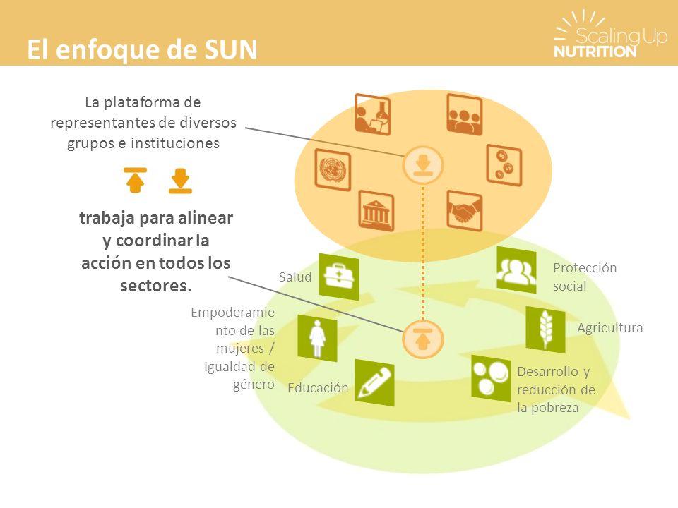 El enfoque de SUN La plataforma de representantes de diversos grupos e instituciones trabaja para alinear y coordinar la acción en todos los sectores.