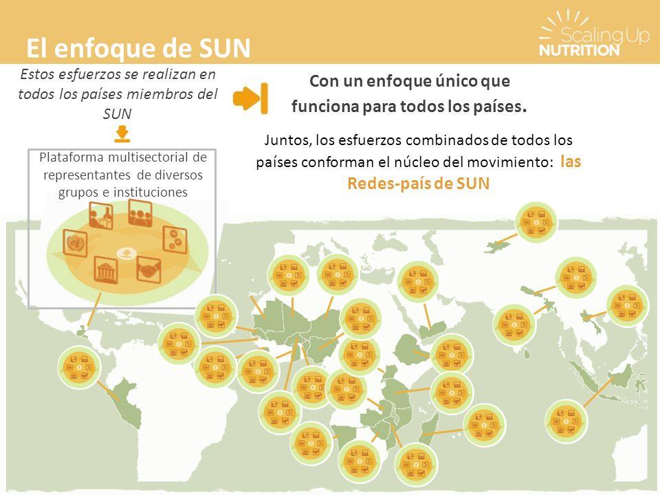 El enfoque de SUN Con un enfoque único que funciona para todos los países.