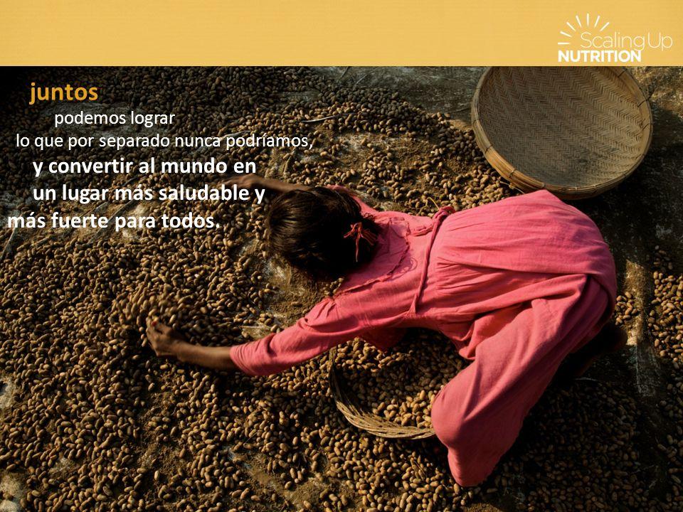 El enfoque de SUN Los gobiernos de los países lideran los esfuerzos nacionales para fomentar la nutrición.