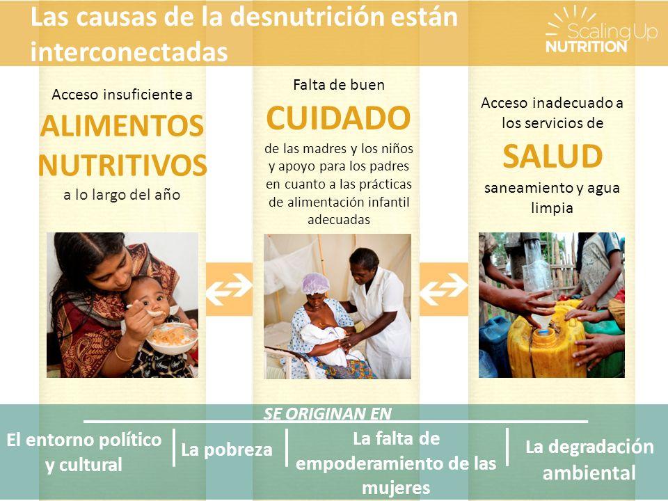 SE ORIGINAN EN La pobreza La falta de empoderamiento de las mujeres El entorno político y cultural Acceso insuficiente a ALIMENTOS NUTRITIVOS a lo largo del año Falta de buen CUIDADO de las madres y los niños y apoyo para los padres en cuanto a las prácticas de alimentación infantil adecuadas Acceso inadecuado a los servicios de SALUD saneamiento y agua limpia Las causas de la desnutrición están interconectadas La degrada ción ambiental