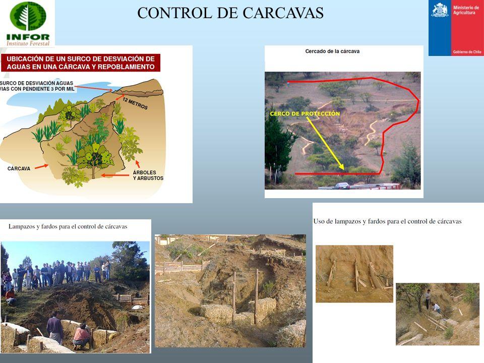 CONTROL DE CARCAVAS