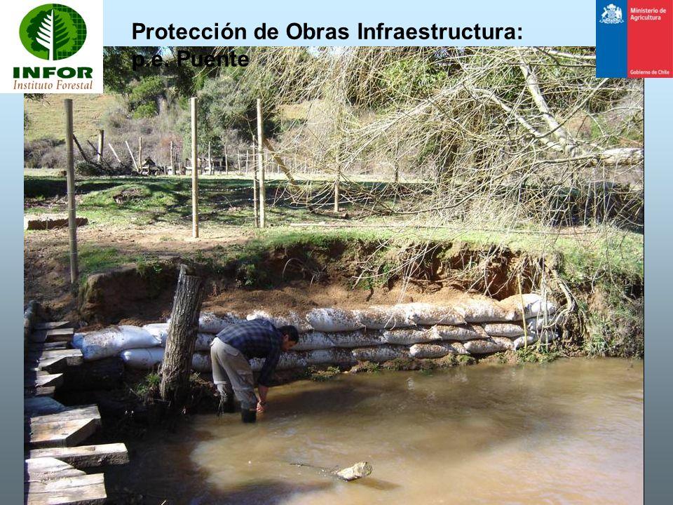 Protección de Obras Infraestructura: p.e. Puente