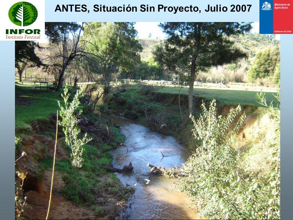 ANTES, Situación Sin Proyecto, Julio 2007