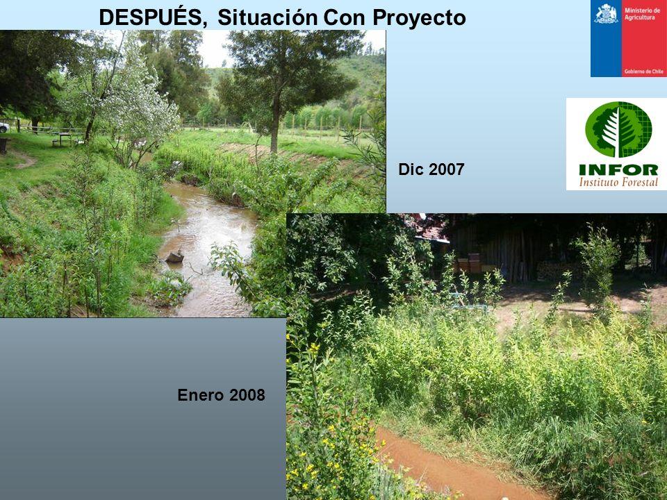 DESPUÉS, Situación Con Proyecto Dic 2007 Enero 2008