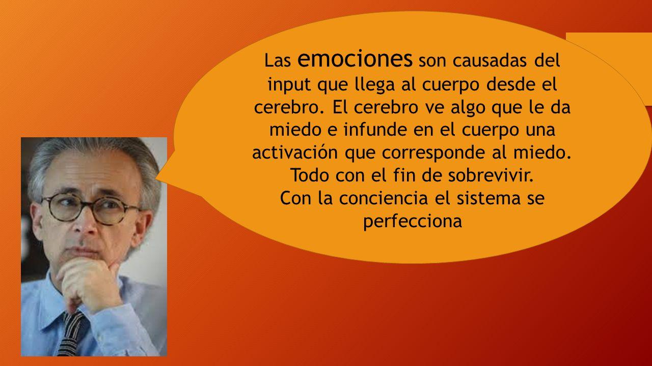 Las emociones son causadas del input que llega al cuerpo desde el cerebro. El cerebro ve algo que le da miedo e infunde en el cuerpo una activación qu