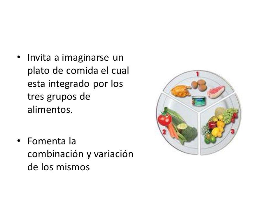 Invita a imaginarse un plato de comida el cual esta integrado por los tres grupos de alimentos. Fomenta la combinación y variación de los mismos