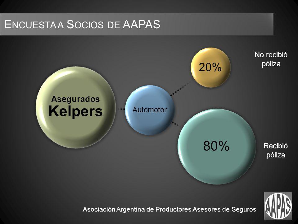 No recibió póliza Recibió póliza Asociación Argentina de Productores Asesores de Seguros E NCUESTA A S OCIOS DE AAPAS