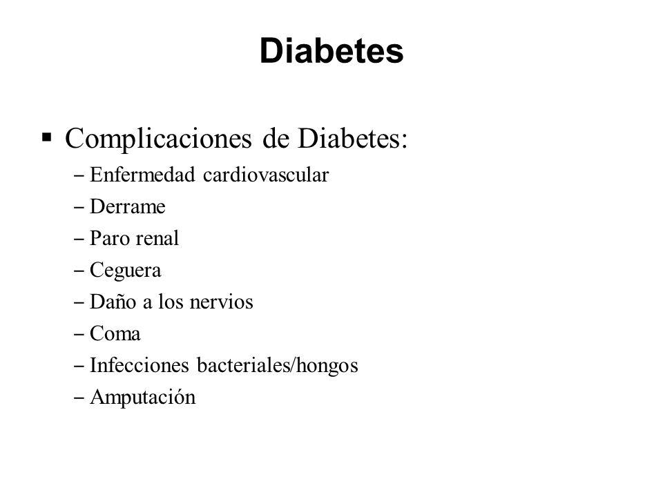 Diabetes Complicaciones de Diabetes: Enfermedad cardiovascular Derrame Paro renal Ceguera Daño a los nervios Coma Infecciones bacteriales/hongos Amput