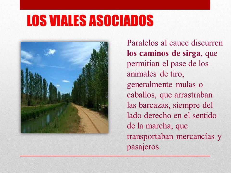 LOS VIALES ASOCIADOS Paralelos al cauce discurren los caminos de sirga, que permitían el pase de los animales de tiro, generalmente mulas o caballos,
