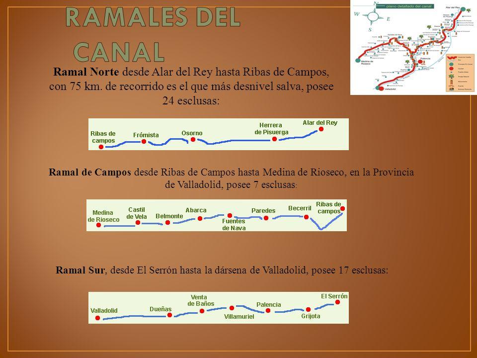 Ramal de Campos desde Ribas de Campos hasta Medina de Rioseco, en la Provincia de Valladolid, posee 7 esclusas : Ramal Sur, desde El Serrón hasta la d