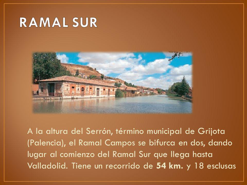 A la altura del Serrón, término municipal de Grijota (Palencia), el Ramal Campos se bifurca en dos, dando lugar al comienzo del Ramal Sur que llega ha
