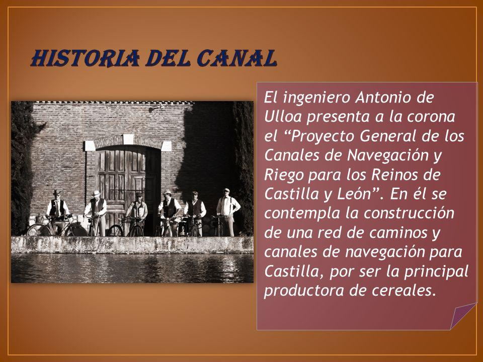 Ramal de Campos desde Ribas de Campos hasta Medina de Rioseco, en la Provincia de Valladolid, posee 7 esclusas : Ramal Sur, desde El Serrón hasta la dársena de Valladolid, posee 17 esclusas: Ramal Norte desde Alar del Rey hasta Ribas de Campos, con 75 km.