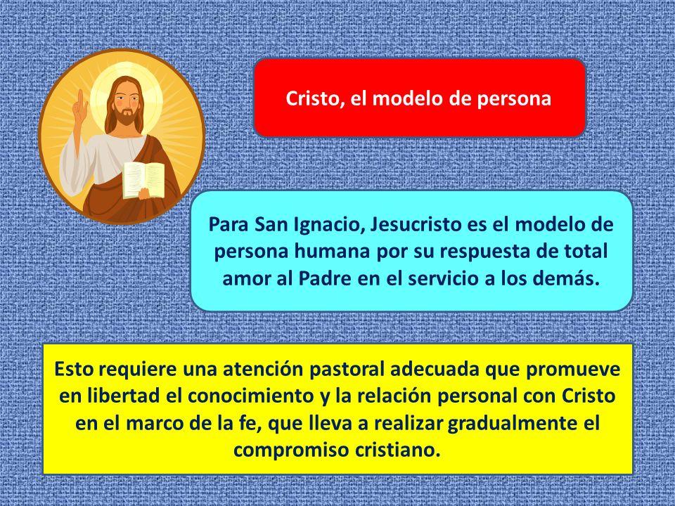 Cristo, el modelo de persona Para San Ignacio, Jesucristo es el modelo de persona humana por su respuesta de total amor al Padre en el servicio a los demás.