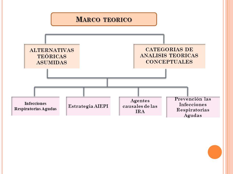 M ARCO TEORICO ALTERNATIVAS TEÓRICAS ASUMIDAS CATEGORIAS DE ANALISIS TEORICAS CONCEPTUALES Infecciones Respiratorias Agudas Agentes causales de las IR