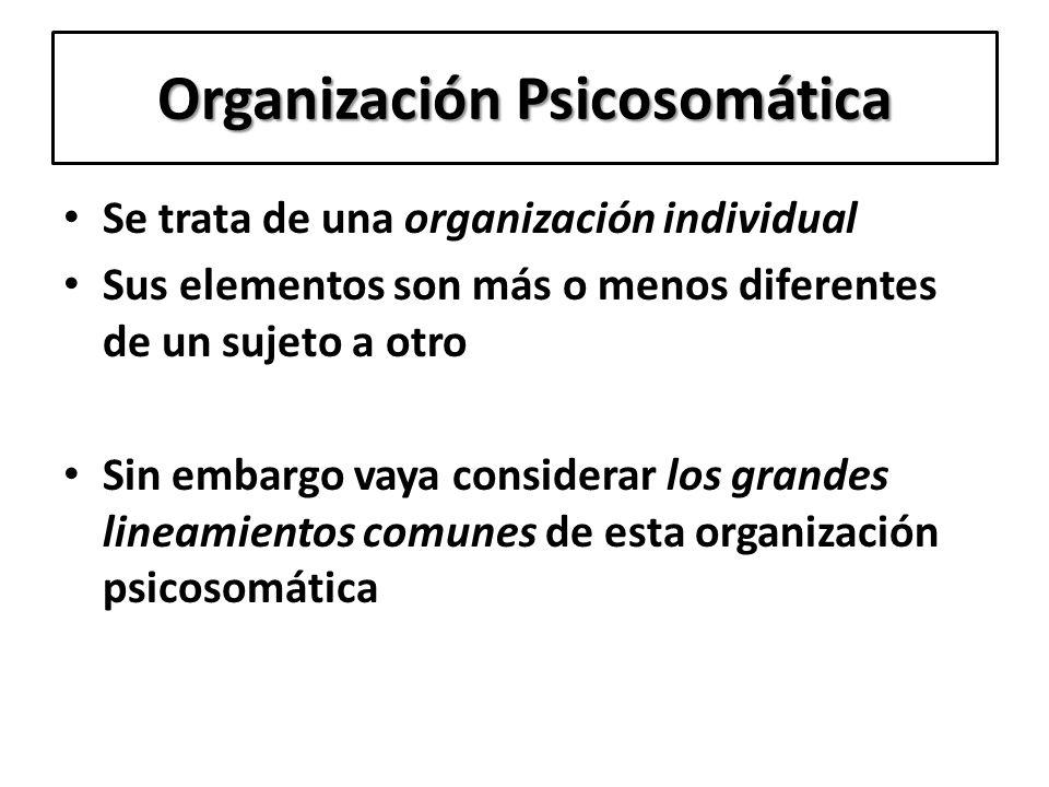 Organización Psicosomática Se trata de una organización individual Sus elementos son más o menos diferentes de un sujeto a otro Sin embargo vaya consi