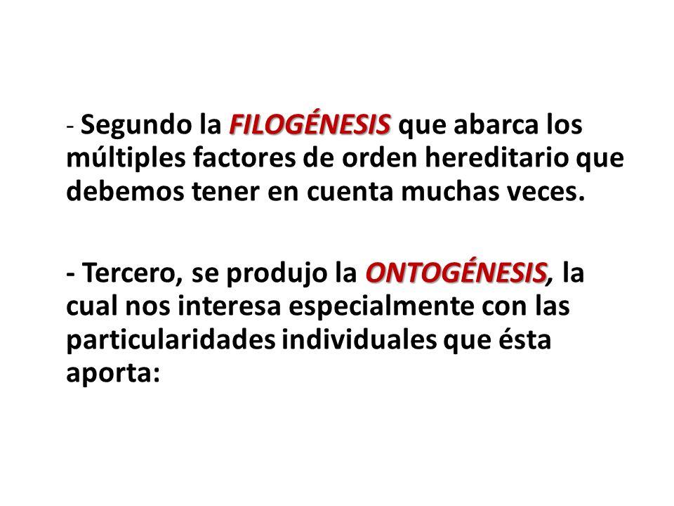 FILOGÉNESIS - Segundo la FILOGÉNESIS que abarca los múltiples factores de orden hereditario que debemos tener en cuenta muchas veces. ONTOGÉNESIS - Te