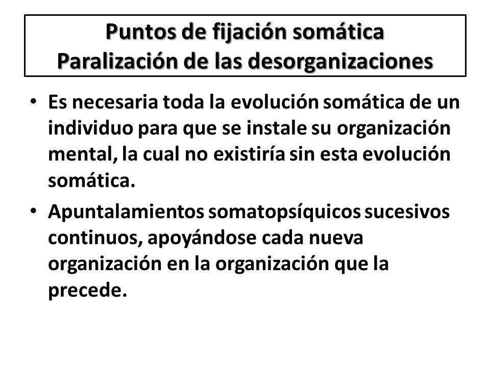 Puntos de fijación somática Paralización de las desorganizaciones Es necesaria toda la evolución somática de un individuo para que se instale su organ