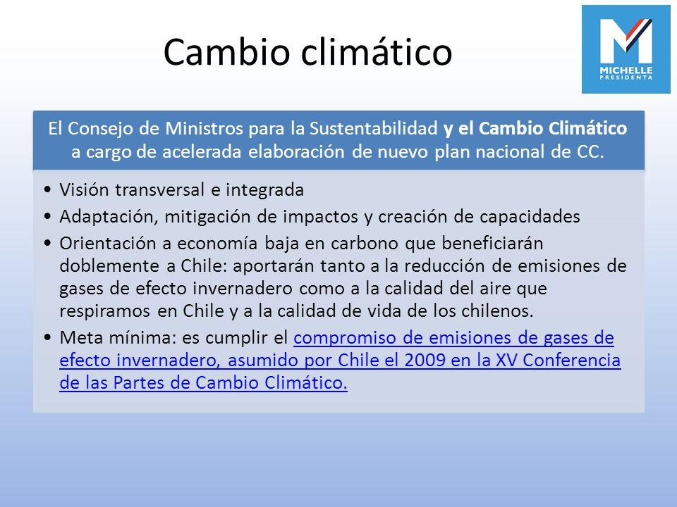 Cambio climático El Consejo de Ministros para la Sustentabilidad y el Cambio Climático a cargo de acelerada elaboración de nuevo plan nacional de CC.