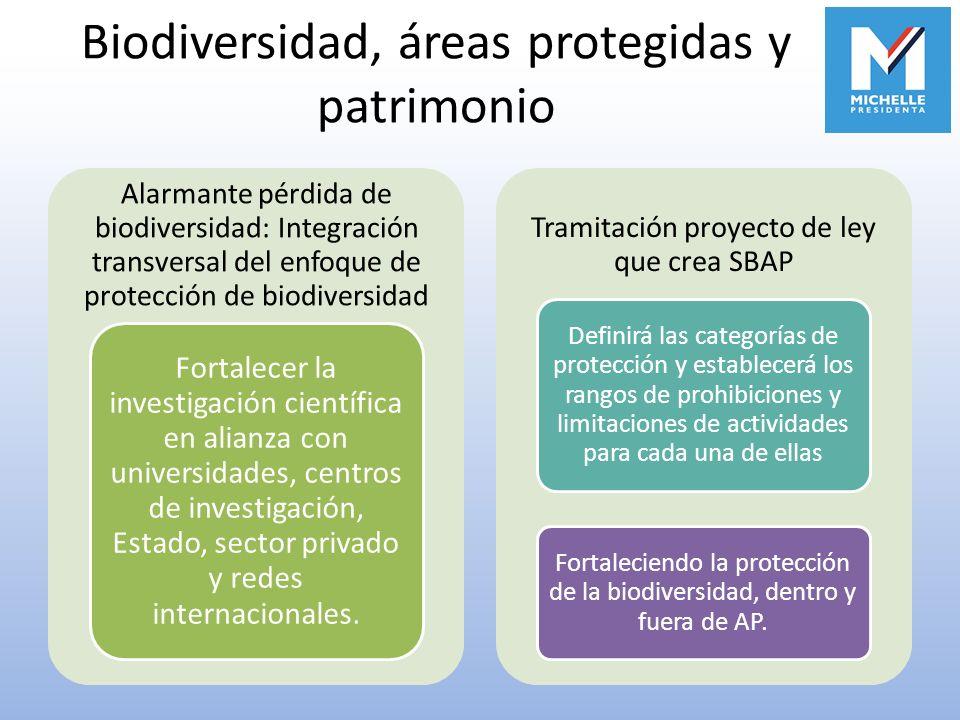 Biodiversidad, áreas protegidas y patrimonio Alarmante pérdida de biodiversidad: Integración transversal del enfoque de protección de biodiversidad Fo