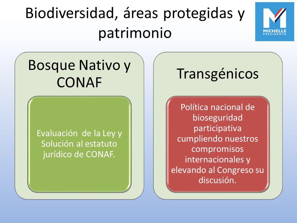 Biodiversidad, áreas protegidas y patrimonio Bosque Nativo y CONAF Evaluación de la Ley y Solución al estatuto jurídico de CONAF. Transgénicos Polític