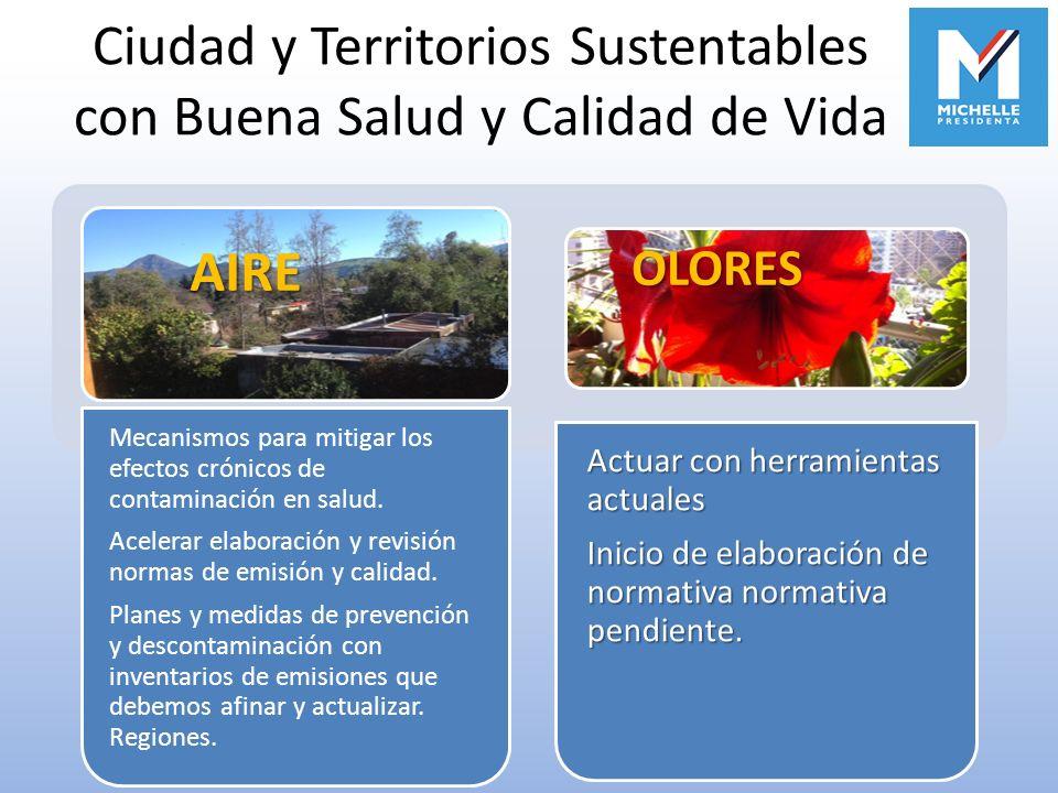 Ciudad y Territorios Sustentables con Buena Salud y Calidad de Vida Mecanismos para mitigar los efectos crónicos de contaminación en salud. Acelerar e