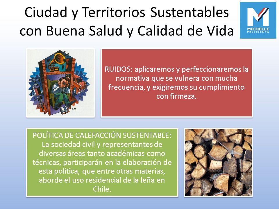 Ciudad y Territorios Sustentables con Buena Salud y Calidad de Vida RUIDOS: aplicaremos y perfeccionaremos la normativa que se vulnera con mucha frecu