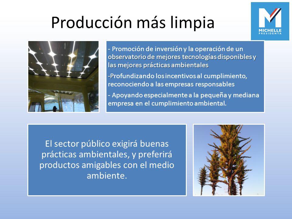 Producción más limpia observatorio de mejores tecnologías disponibles y las mejores prácticas ambientales - Promoción de inversión y la operación de u